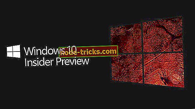 Oprava: Bezpečnostné nastavenia potrebujú pozornosť pre Windows 10 Insider stavia