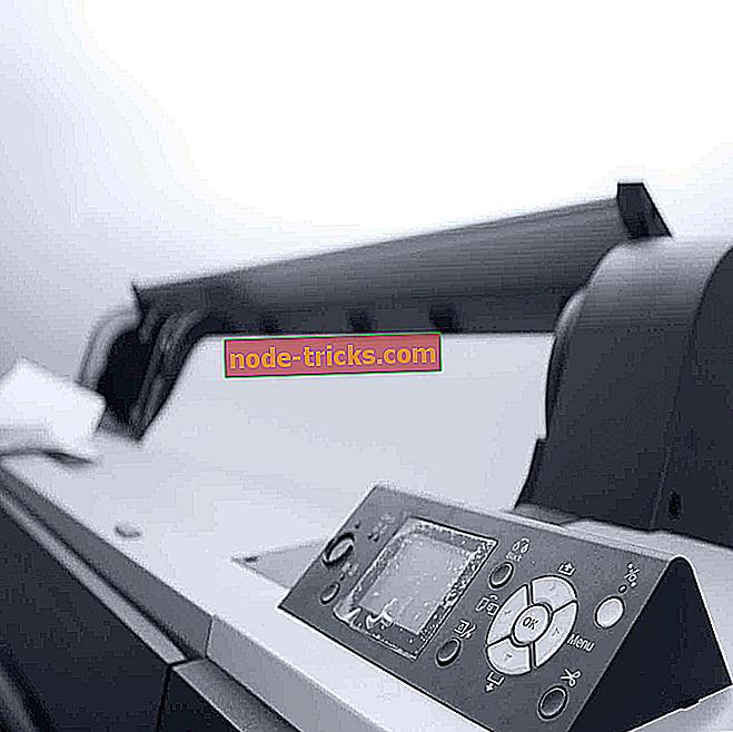 Принтер не будет печатать в Windows 10 [FIX]