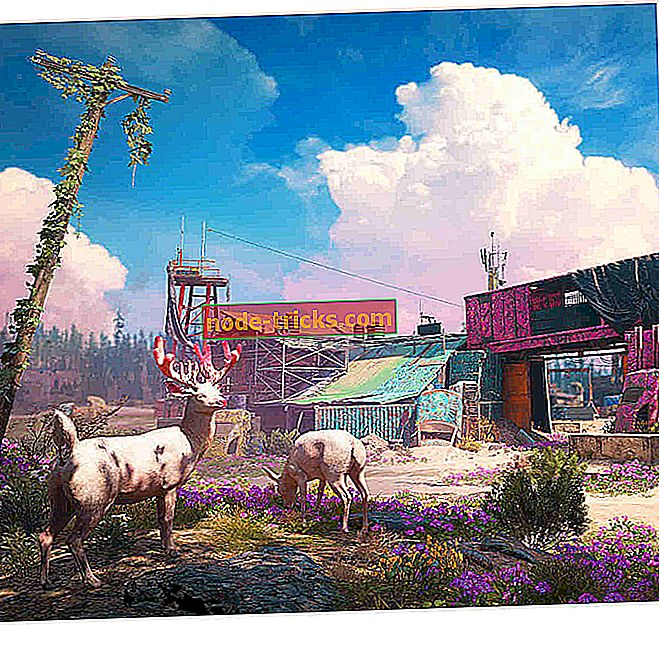 spille - Far Cry New Dawn trenger nye ekspedisjoner og et full størrelse kart