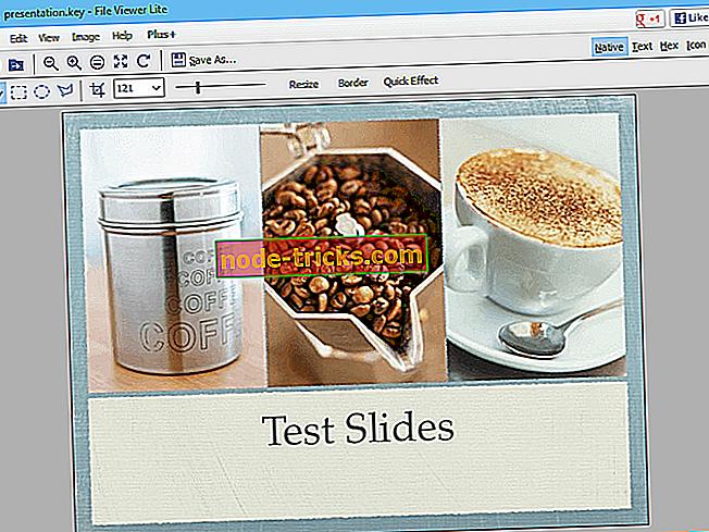 Kuidas avada KEY-faile Windowsis